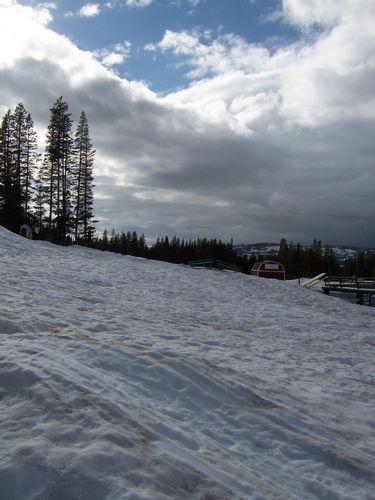 Snow (palo-alto_100_8984.jpg) wird geladen. Eindrucksvolle Fotos von der Westküste Amerikas erwarten Sie.